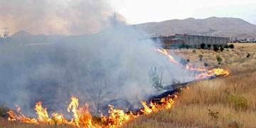 آتشسوزی پنج هکتار از عرصههای منابع طبیعی دلیجان