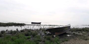 علاجبخشی خلیج گرگان یک ضرورت است/ هیچ استفادهای از ظرفیت ساحلی در گلستان نمیشود