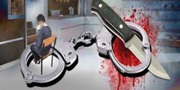 کاهش 42 درصدی جرایم خشن در استان زنجان