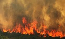 کوههای باغ تاج دشتستان همچنان در آتش میسوزد