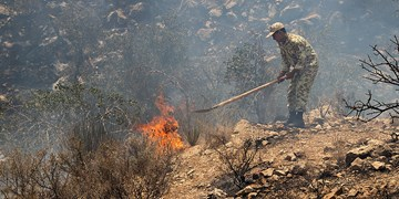 با تخریب کنندگان طبیعت برخورد میشود/ آتش درحال مهار است