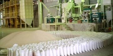مجهزترین شالیکوبی کشور در پارس آباد مغان آغاز بهکار کرد