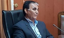 شهید صارمی با نورانیت قلم  به مصاف ظلمت رفت