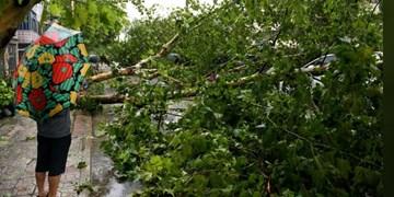 طوفان «لکیما» 13 نفر را در چین قربانی کرد