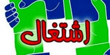 ایجاد 1500 فرصت شغلی در کمیته امداد  استان زنجان
