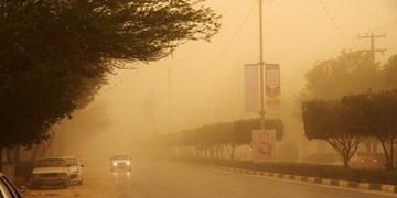 خسارت ۵۰۵ میلیارد تومانی پدیده گرد و غبار به خراسانجنوبی