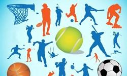 ورزش مازندران| از طلای موسوی در ووشو تا پایان بلاتکلیفی در تکواندو مازندران