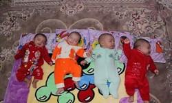 کمک بلاعوض کمیته امداد به خانوادههای دارای فرزند چندقلو