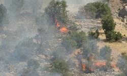وقوع 4 فقره حریق در اراضی استان/ گشتزنی شبانهروزی نیروهای یگان حفاظت در عرصههای منابع طبیعی