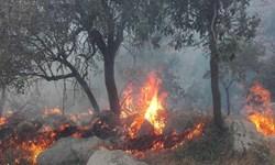 بلای مدیریت بحرانزده/ تَبر کم بود، آتش هم بر جان جنگلهای قرهداغ افتاد