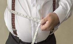 محققان: «مالیات»؛ راهحلی برای کاهش چاقی