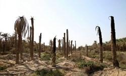 14 روستای شادگان 2 ساعت در روز آب دارند
