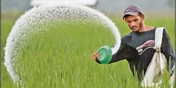 توزیع بیش از سه هزار تن کود شیمیایی در بین کشاورزان شهرستانهای ایلام