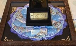 پزشک ایرانی رکورد «پیوند کلیه» در جهان را شکست