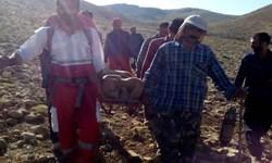 حمله خرس به یک دامدار در اندیکا