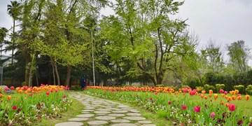 افتتاح یا اجرای ماهانه یک پارک در هر منطقه همدان