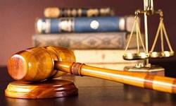 پای«شبنم نعمت زاده» به پرونده دیواندری باز شد/سرنوشت نامعلوم ۱۱۶ میلیون درهم