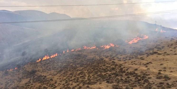 تعیین نحوه جبران خسارات داوطلبین اطفاء حریق جنگل ها در مجلس