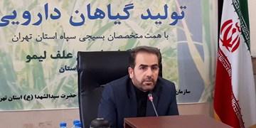 بومیسازی گیاهان دارویی در استان تهران