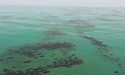 فیلم| مشاهده آلودگی و لکههای نفتی در خلیج فارس