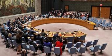 شورای امنیت قطعنامه توقف درگیریها در شرایط کرونا را تصویب کرد