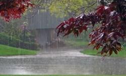 بارشهای پراکنده مهمان مناطق غربی و ارتفاعات مازندران