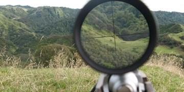 دستورالعمل شکار پرندگان در مازندران هنوز صادر نشد