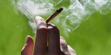 کاهش 50 درصدی واردات سیگار قاچاق در 11 ماهه سال 98+ سند