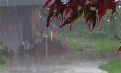 افزایش چشمگیر بارشها در استان اردبیل/ ثبت ۸۵ میلی متر بارش در ایستگاه بارانسنجی مشگین غربی