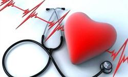 بیماریهای قلبی و عروقی بلای جان شهرضاییها