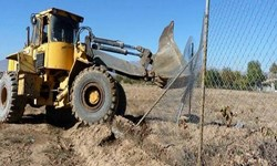 ۲۱۷ هکتار از اراضی ملی در بخش کهریزک آزادسازی شد