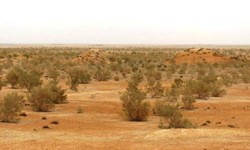 آغاز آبیاری پروژههای بیابانزدایی در سمنان