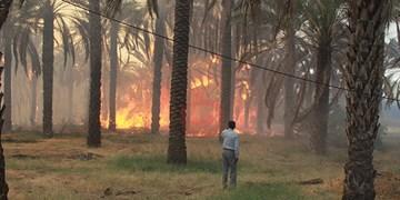 آغاز عملیات اطفاء حریق در جنگل خسرج