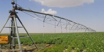 کاشت انواع محصولات در اراضی ۷۰۰ هکتاری کشت و صنعت شهمیرزاد