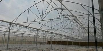 صادرات سازه و تجهیزات گلخانهای 100 میلیون دلار ارزآوری دارد