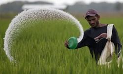 15 درصد کود مورد نیاز کشور از واردات تامین میشود