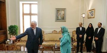 دیدار خداحافظی سفیر پاکستان با محمد جواد ظریف