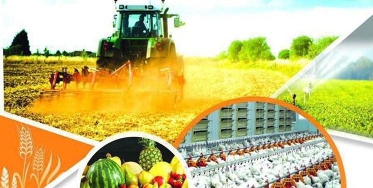 تعیین تکلیف بدهی معوق کشاورزان و تولیدکنندگان جنوب کرمان