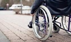 عوامل ژنتیکی علت  نیمی از معلولیتها