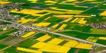 چین رتبه 2 کشاورزی در جهان