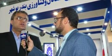 نخل و خرما در برنامه جامع گردشگری بوشهر جایگاه ویژهای دارد
