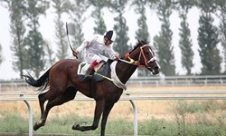 درخشش سوارکاران بوشهری در مسابقات اسبسواری