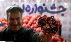 جشنی برای انارها از قرمز تا سیاه! + عکس
