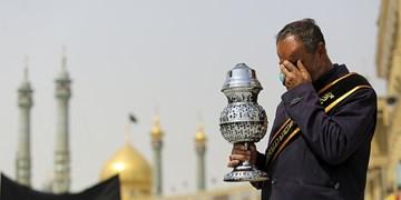 «زعفران نمکزار» اثری در وصف حضرت معصومه (س)+فیلم