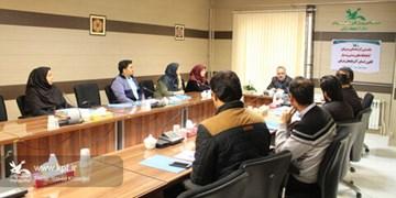 فعالیت ۳۳ کتابخانه ثابت، پستی و سیار در آذربایجانشرقی