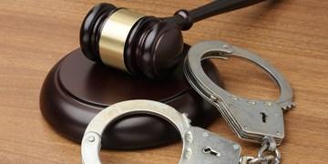 دستگیری ۲۰ توزیعکننده مواد مخدر در تویسرکان