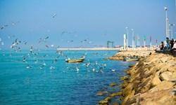 «جهش تولید» با تکمیل پروژهها در منطقه ویژه اقتصادی خلیج فارس