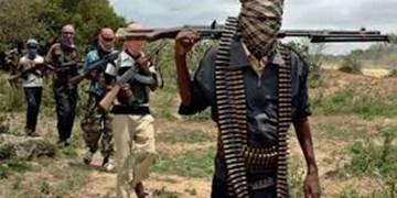 کشته شدن ۱۲۰ تروریست در عملیات نظامی در نیجر