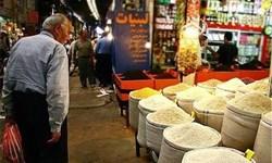 دولت باید به مصوبه عدم ورود واردات برنج در فصل برداشت توجه کند
