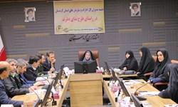 ترویج فرهنگ ایرانی اسلامی در قالب طرح ندای فطرت ضروری است